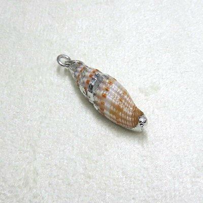 画像2: 貝殻アクセサリーパーツSV 小 1個