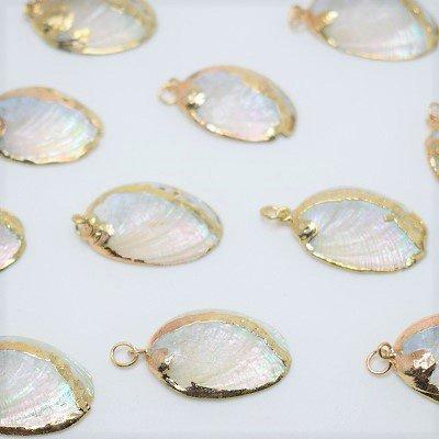 画像2: 貝殻アクセサリーパーツ(小)平型 1個